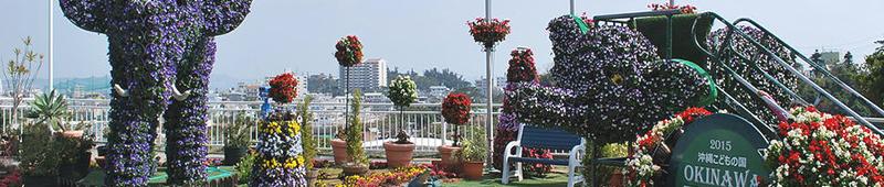 立体花壇 独自のシステムで屋外を涼しく華やかに