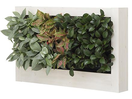 カセット式壁面緑化システムModerno(モデルノ)